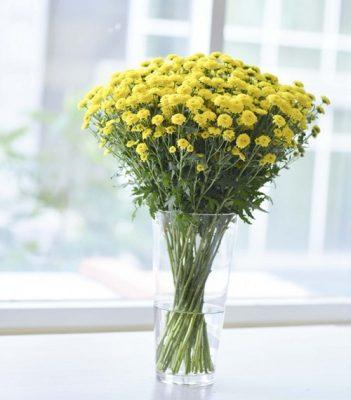 Bó hoa cúc nhỏ