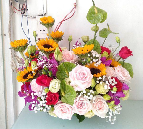 hoa sinh nhat ban gai